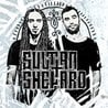 Sultan + Shepard with Brohug at Create