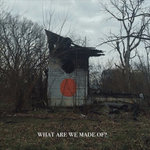 "Mellow out to new Shigeto called ""What Are We Made Of?"""