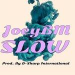 """JoeyBM – """"Slow"""" (Prod. By D-Sharp)"""
