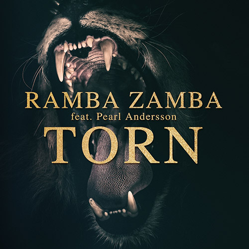 Ramba Zamba Dj